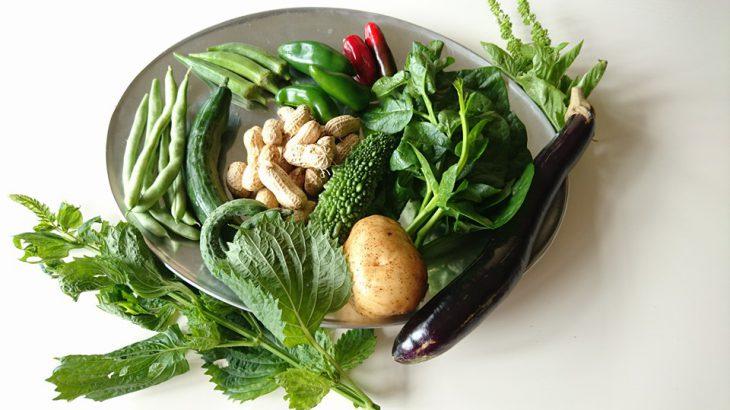 手作りのおばんざい+無農薬玄米ご飯の「免疫up弁当」